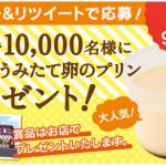 【1万名】シャトレーゼ 無添加うみたて卵のプリン