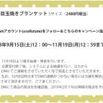 【10人に1人】ブランケット(2480円相当)