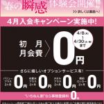 メガロス 19年4月入会キャンペーン 比較